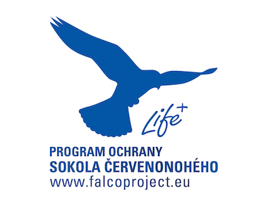 falcoproject logo