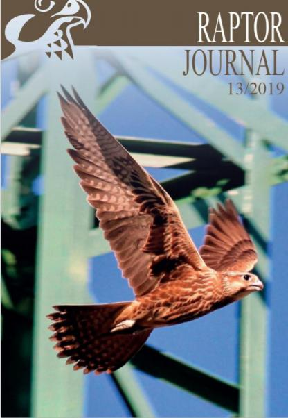 raptor journal13 2019