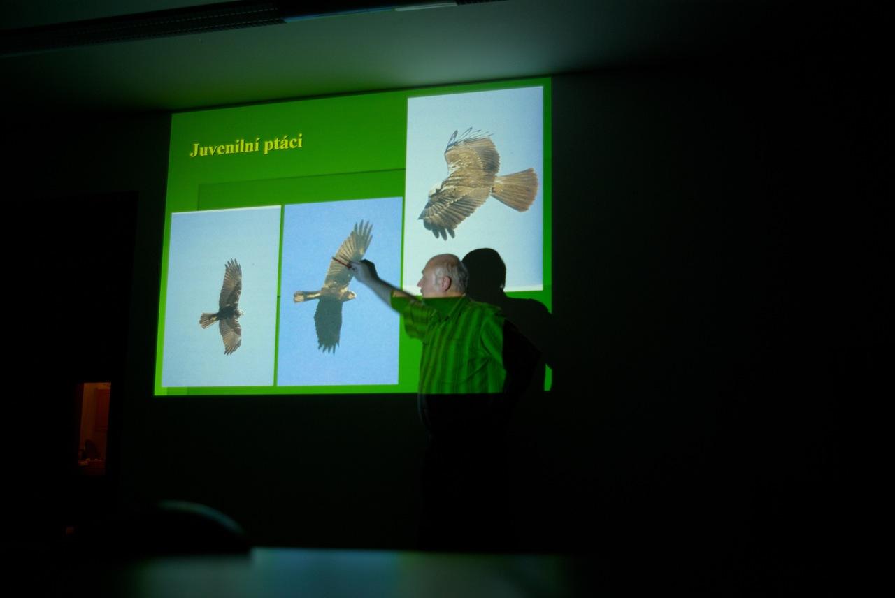 Dravce a sovy - edukačný program ochrany dravcov na slovensku